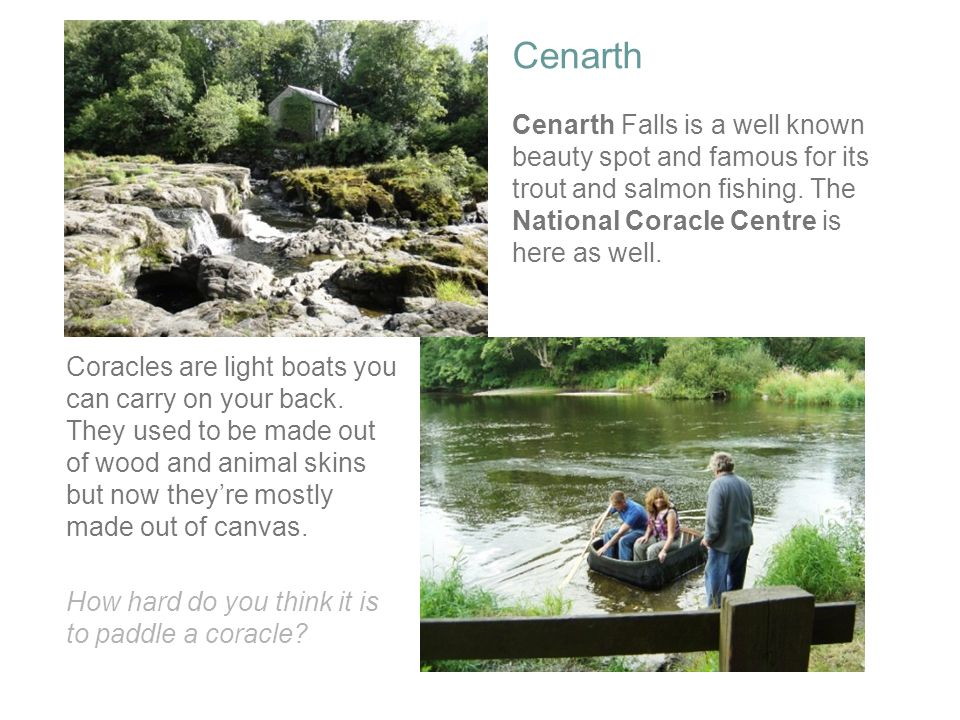 Cenarth Cenarth Falls is a well known beauty spot and famous for its trout and salmon fishing. The National Coracle Centre is here as well. Coracles a