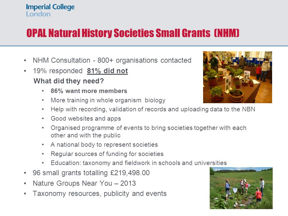 OPAL Natural History Societies Small Grants (NHM) NHM Consultation - 800+ organisations contacted 19% responded 81% did not What did they need.