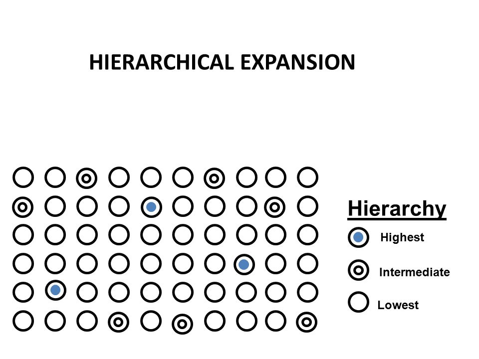 Hierarchy Highest Lowest Intermediate HIERARCHICAL EXPANSION