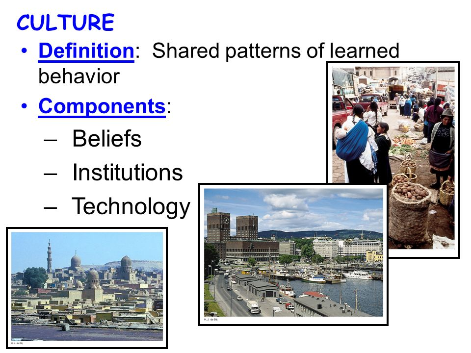 Definition: Shared patterns of learned behavior Components: – Beliefs – Institutions – Technology CULTURE