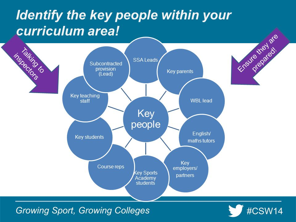 Identify the key people within your curriculum area.