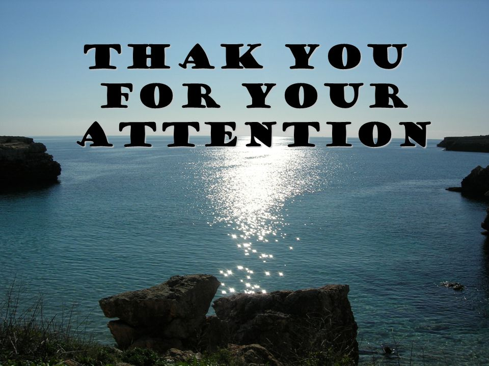 Thak you for your attention