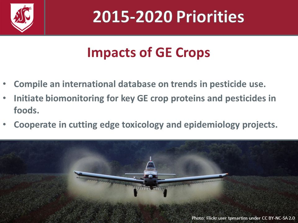 Photo: Flickr user tpmartins under CC BY-NC-SA 2.0 Impacts of GE Crops Compile an international database on trends in pesticide use. Initiate biomonit