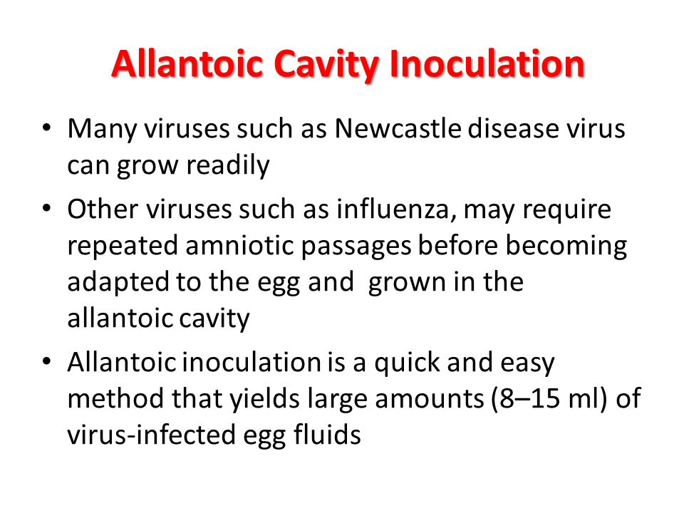Allantoic Cavity Inoculation Many viruses such as Newcastle disease virus can grow readily Other viruses such as influenza, may require repeated amnio
