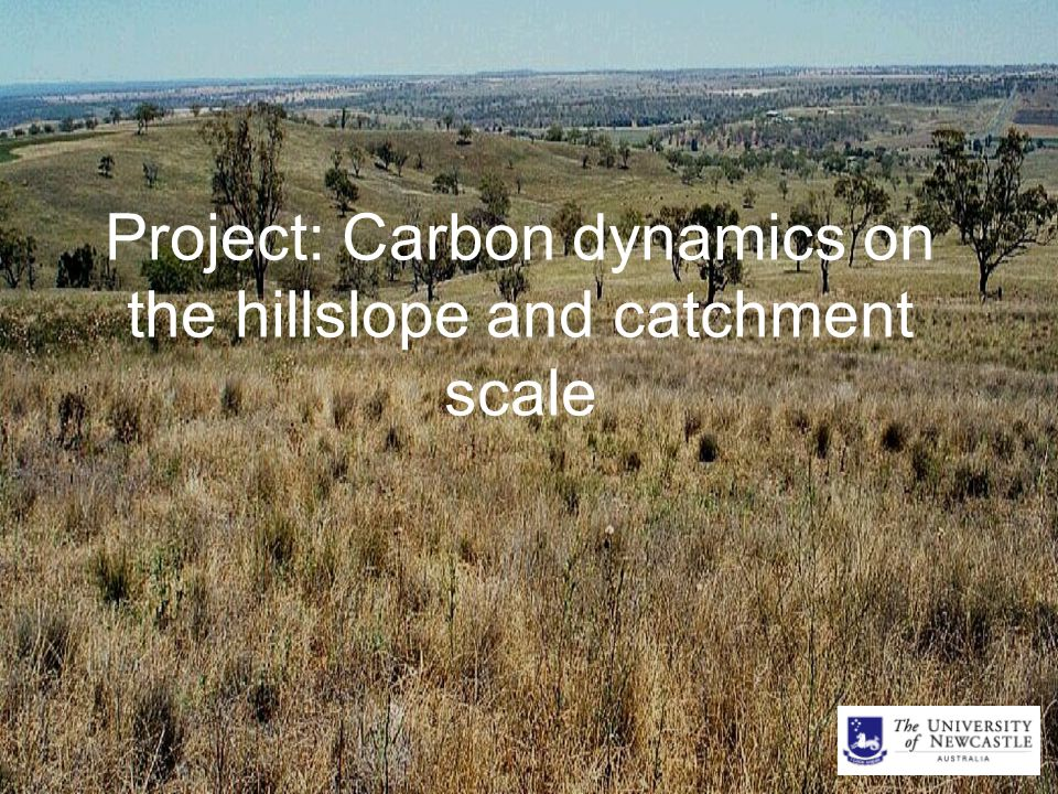 Project: Carbon dynamics on the hillslope and catchment scale