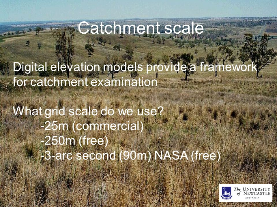 Catchment scale Digital elevation models provide a framework for catchment examination What grid scale do we use.