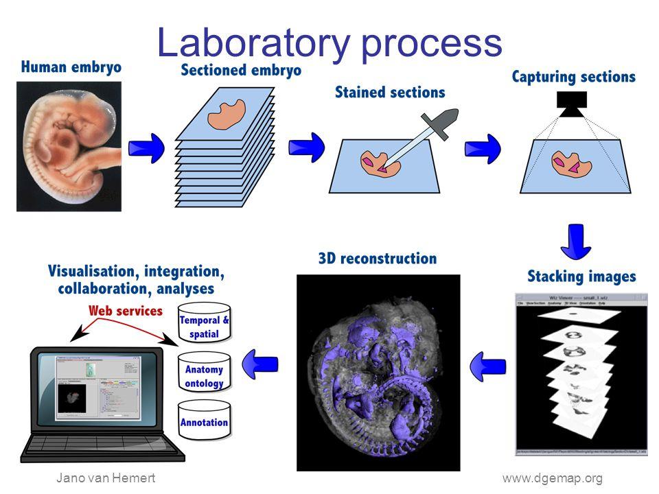 Jano van Hemertwww.dgemap.org Laboratory process