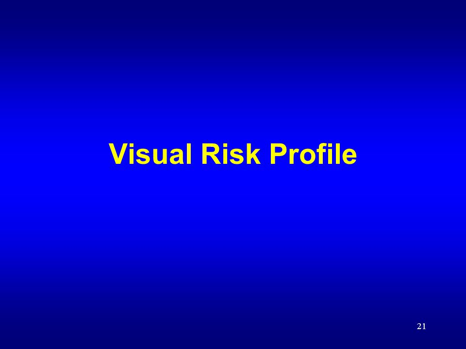 21 Visual Risk Profile