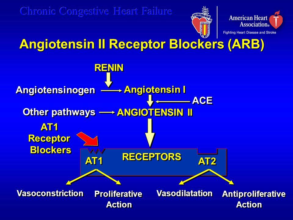 RENIN Angiotensinogen Angiotensin I ANGIOTENSIN II Angiotensin I ANGIOTENSIN II ACE Other pathways Vasoconstriction Proliferative Action Proliferative Action Vasodilatation Antiproliferative Action Antiproliferative Action AT1 AT2 AT1 Receptor Blockers AT1 Receptor Blockers RECEPTORS Angiotensin II Receptor Blockers (ARB)