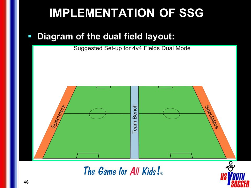 48 IMPLEMENTATION OF SSG  Diagram of the dual field layout: