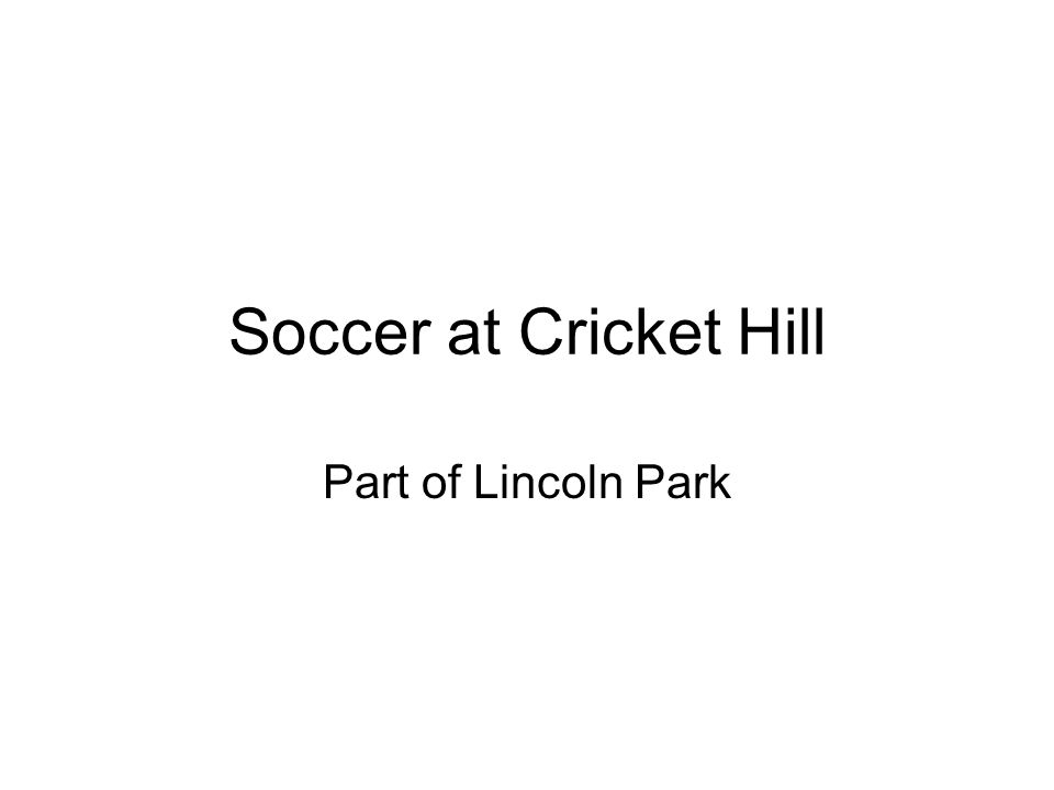 Soccer at Cricket Hill Part of Lincoln Park