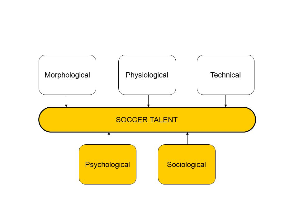 PsychologicalSociological SOCCER TALENT MorphologicalPhysiologicalTechnical