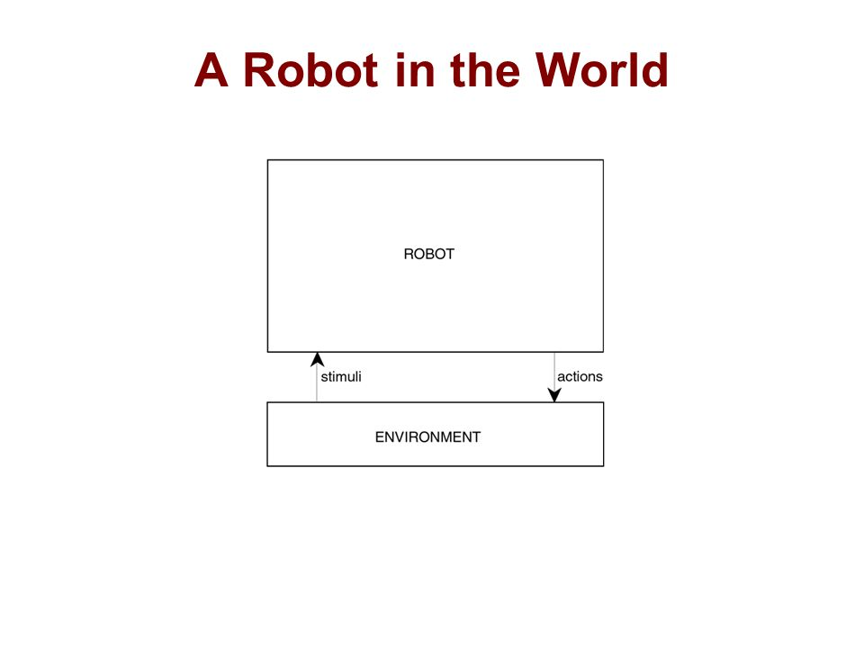 A Robot in the World