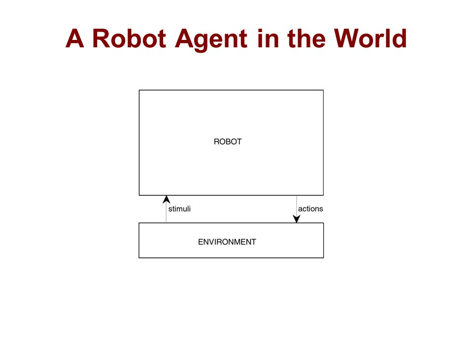 A Robot Agent in the World