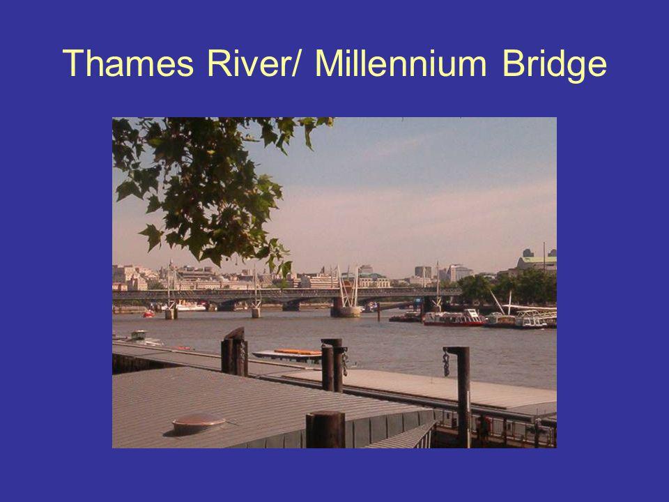 Thames River/ Millennium Bridge