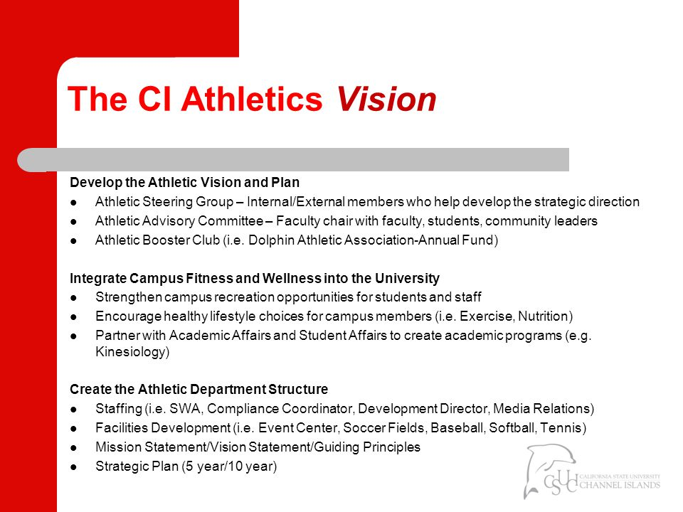 The CI Athletics Vision Develop the Athletic Vision and Plan Athletic Steering Group – Internal/External members who help develop the strategic direction Athletic Advisory Committee – Faculty chair with faculty, students, community leaders Athletic Booster Club (i.e.