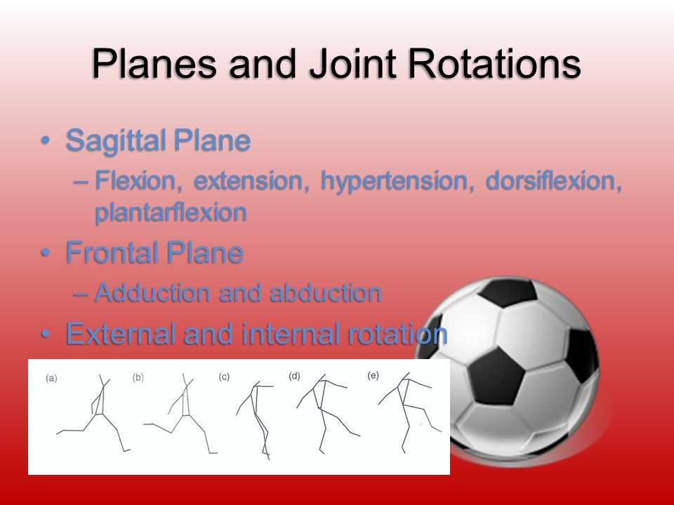 Planes and Joint Rotations Sagittal PlaneSagittal Plane –Flexion, extension, hypertension, dorsiflexion, plantarflexion Frontal PlaneFrontal Plane –Adduction and abduction External and internal rotationExternal and internal rotation