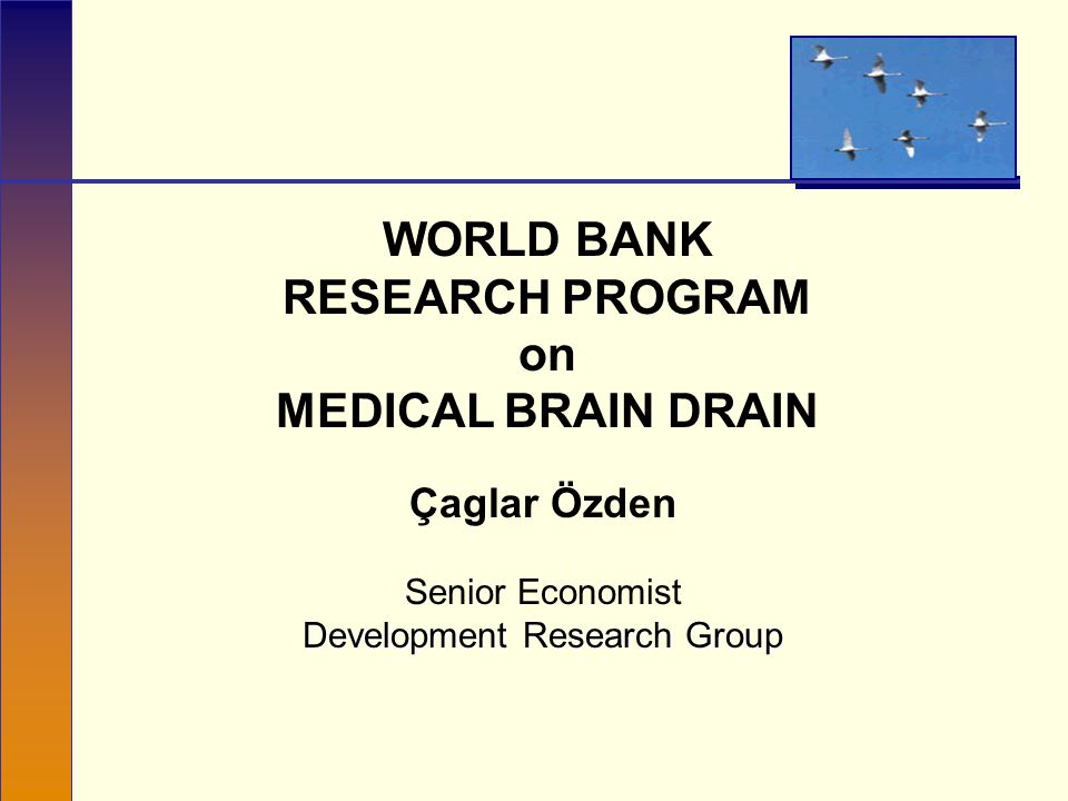 WORLD BANK RESEARCH PROGRAM on MEDICAL BRAIN DRAIN Çaglar Özden Senior Economist Development Research Group
