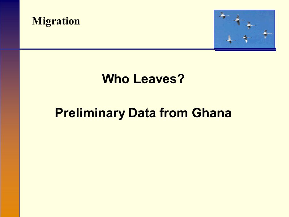Migration Who Leaves Preliminary Data from Ghana