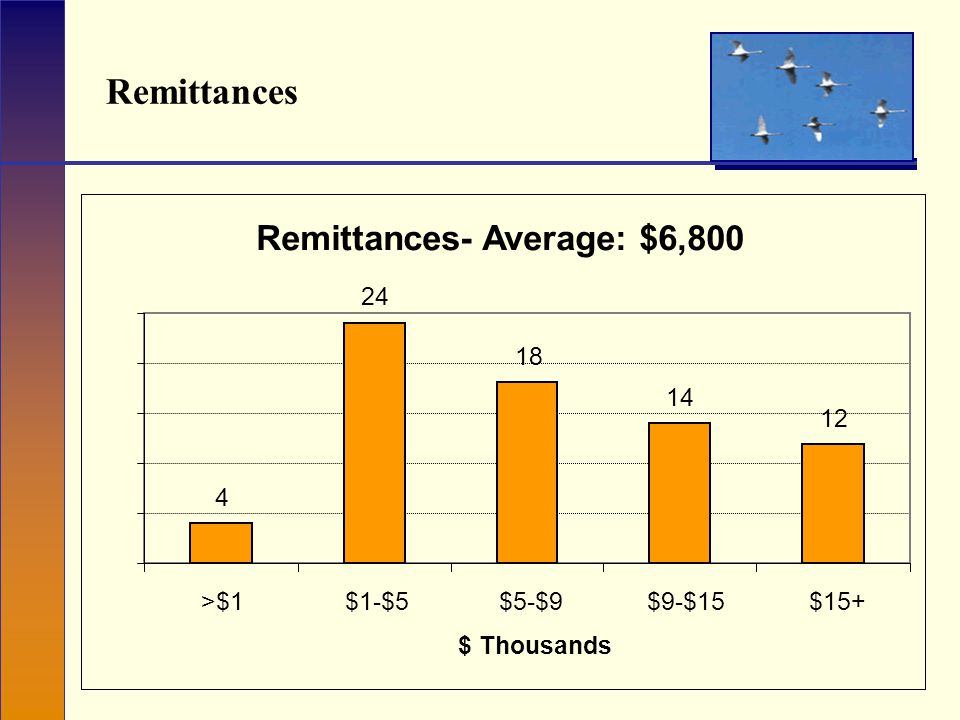 Remittances Remittances- Average: $6,800 4 24 18 14 12 >$1$1-$5$5-$9$9-$15$15+ $ Thousands