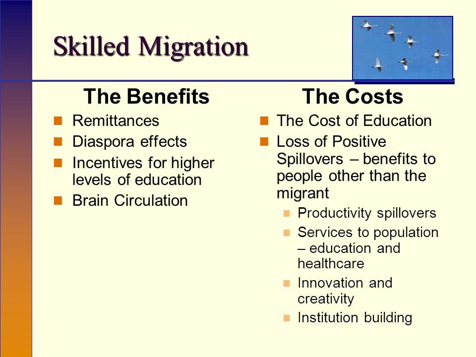 The Benefits Remittances Diaspora effects Incentives for higher levels of education Brain Circulation The Costs The Cost of Education Loss of Positive Spillovers – benefits to people other than the migrant Productivity spillovers Services to population – education and healthcare Innovation and creativity Institution building Skilled Migration