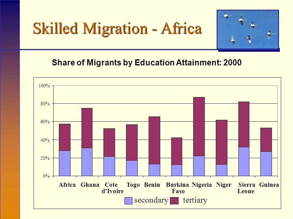 Skilled Migration - Africa Share of Migrants by Education Attainment: 2000 0% 20% 40% 60% 80% 100% AfricaGhanaCote d Ivoire TogoBeninBurkina Faso NigeriaNigerSierra Leone Guinea secondarytertiary
