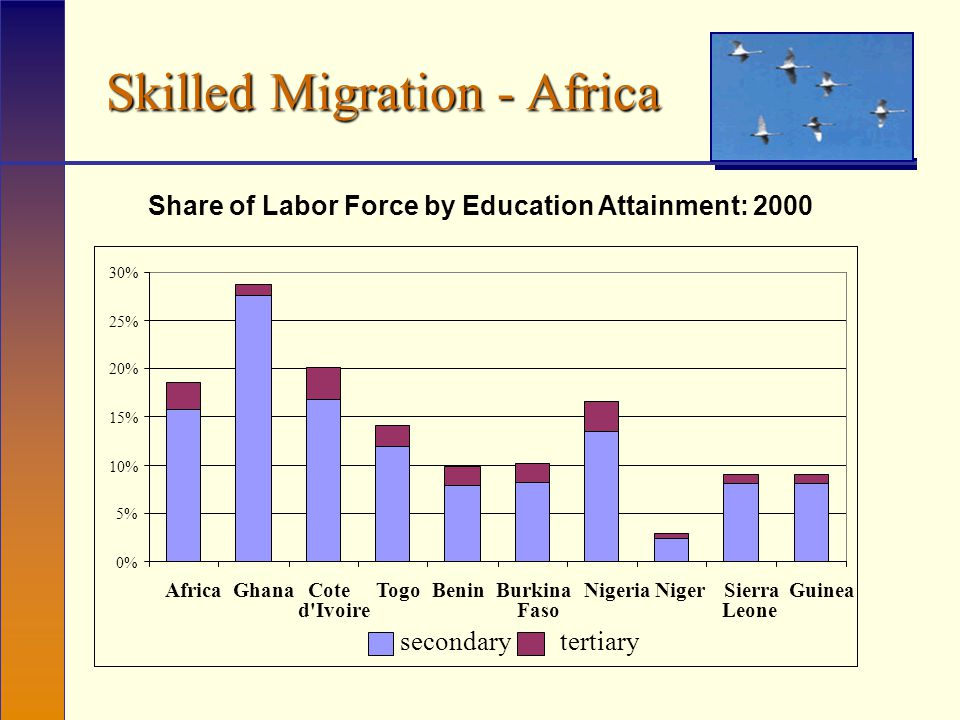 Skilled Migration - Africa Share of Labor Force by Education Attainment: 2000 0% 5% 10% 15% 20% 25% 30% AfricaGhanaCote d Ivoire TogoBeninBurkina Faso NigeriaNigerSierra Leone Guinea secondarytertiary