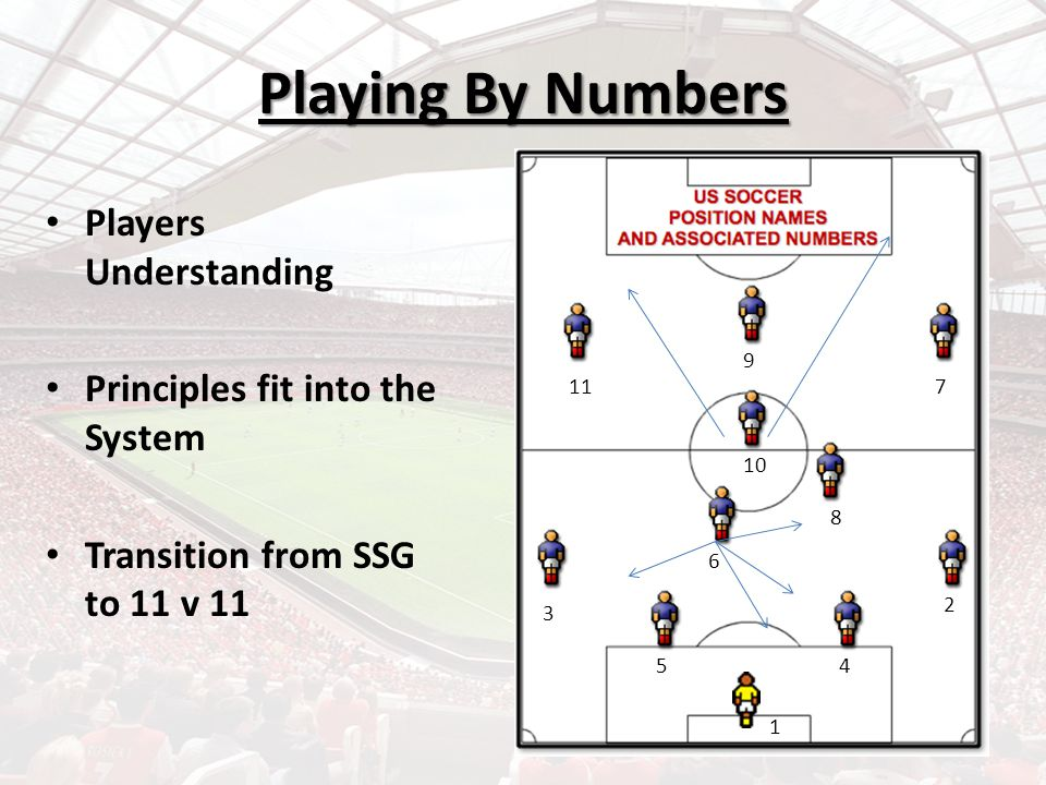 Playing By Numbers Players Understanding Principles fit into the System Transition from SSG to 11 v 11 1 2 3 45 6 8 10 11 9 7