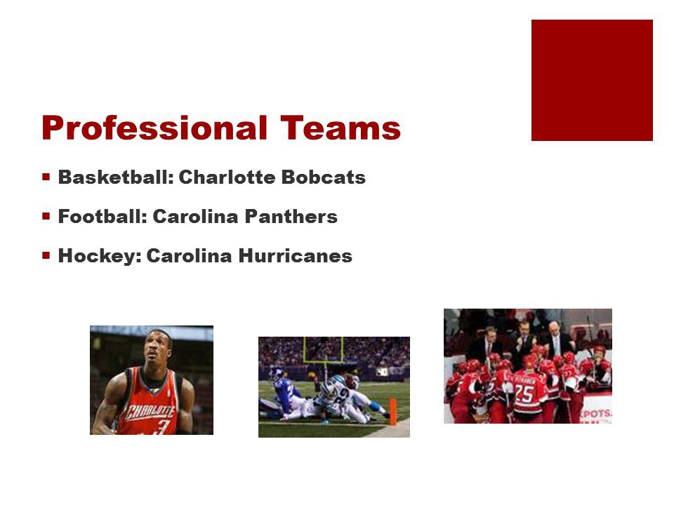 Professional Teams  Basketball: Charlotte Bobcats  Football: Carolina Panthers  Hockey: Carolina Hurricanes