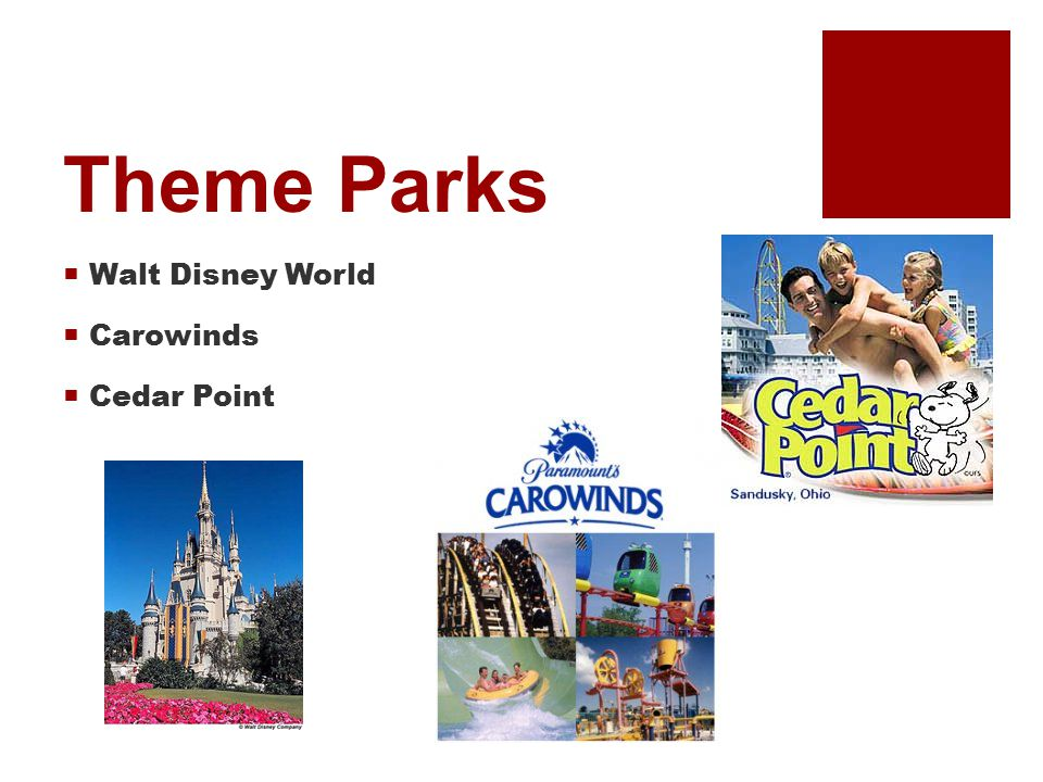 Theme Parks  Walt Disney World  Carowinds  Cedar Point