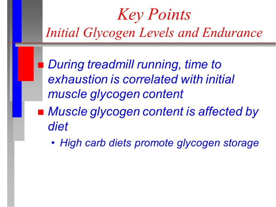 Key Points Initial Glycogen Levels and Endurance n During treadmill running, time to exhaustion is correlated with initial muscle glycogen content n Muscle glycogen content is affected by diet High carb diets promote glycogen storage