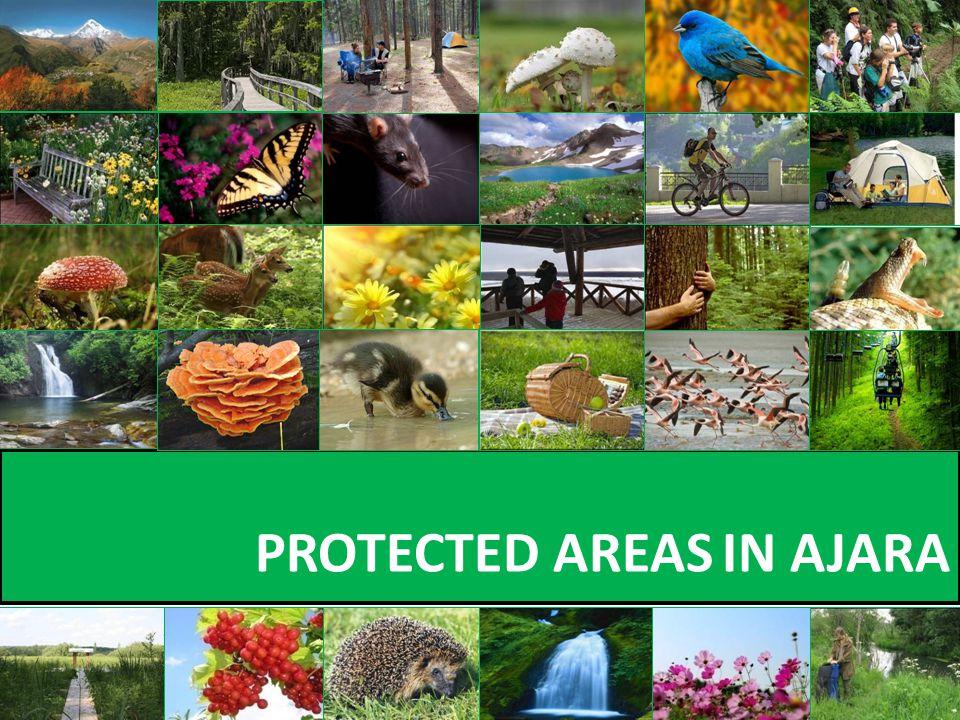 PROTECTED AREAS IN AJARA