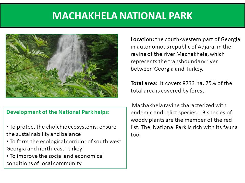 MACHAKHELA NATIONAL PARK Location: the south-western part of Georgia in autonomous republic of Adjara, in the ravine of the river Machakhela, which represents the transboundary river between Georgia and Turkey.