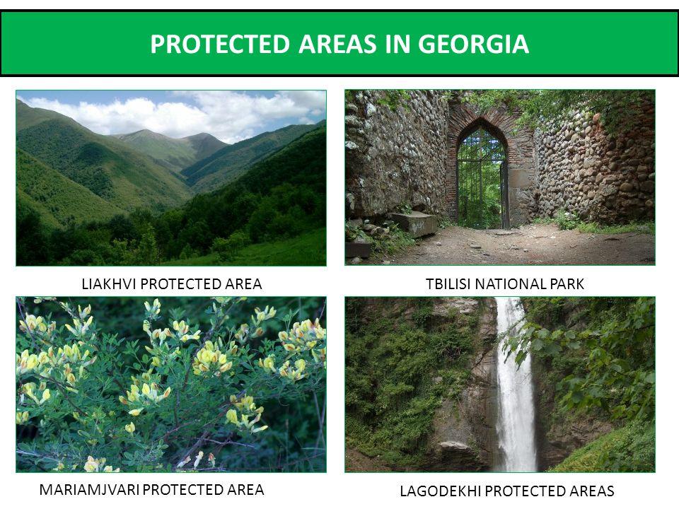 PROTECTED AREAS IN GEORGIA MARIAMJVARI PROTECTED AREA TBILISI NATIONAL PARKLIAKHVI PROTECTED AREA LAGODEKHI PROTECTED AREAS