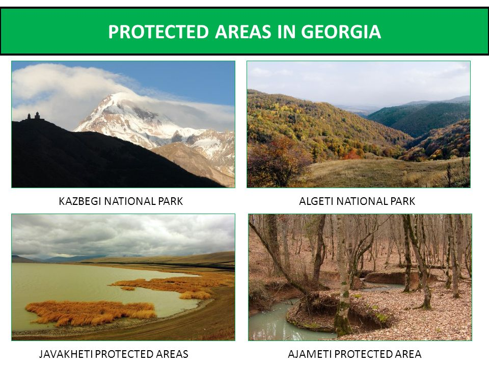 PROTECTED AREAS IN GEORGIA JAVAKHETI PROTECTED AREAS ALGETI NATIONAL PARKKAZBEGI NATIONAL PARK AJAMETI PROTECTED AREA