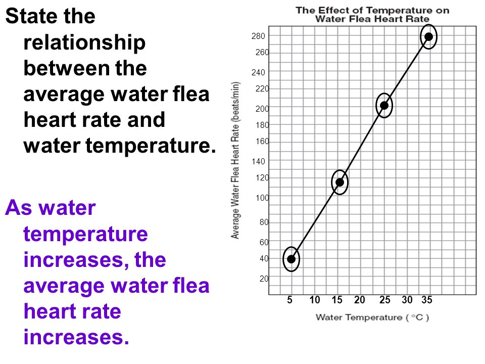 5 10 15 20 25 30 35 20 40 60 80 100 120 140 160 180 200 220 240 260 280 State the relationship between the average water flea heart rate and water tem