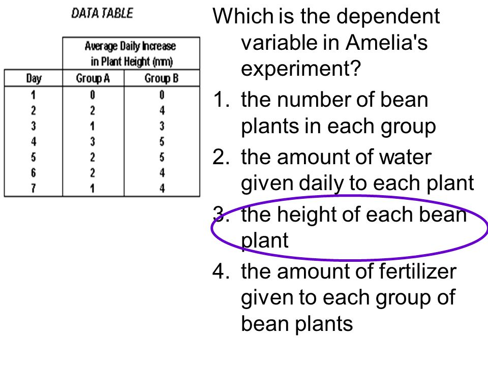 Which is the dependent variable in Amelia's experiment? 1.the number of bean plants in each group 2.the amount of water given daily to each plant 3.th
