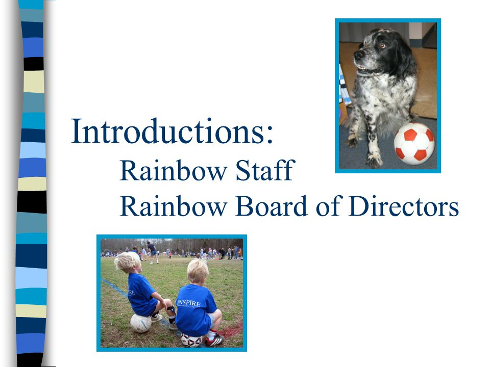 An effective organization is one where the Rainbow Director and Board of Directors communicate and work well together.