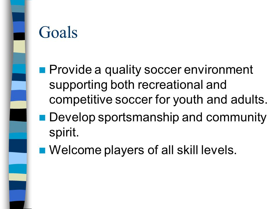 Vision for the Future: Offer more and improved soccer opportunities.