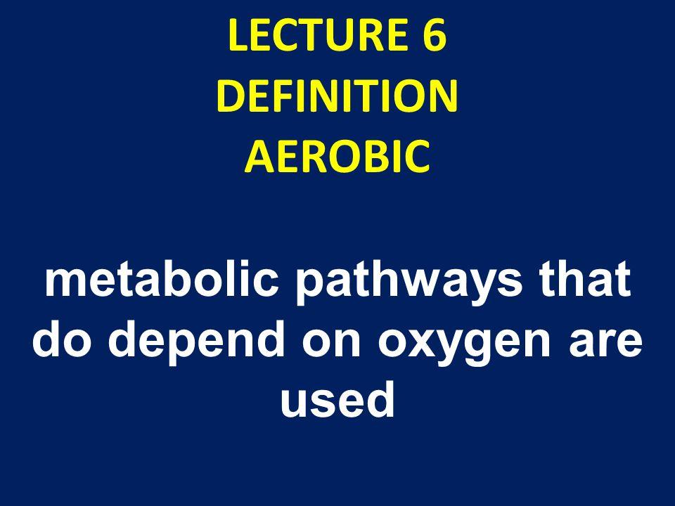 MARATHON RUNNING-AEROBIC TRAINING carbohydrate intake should reflect daily training load i.e.