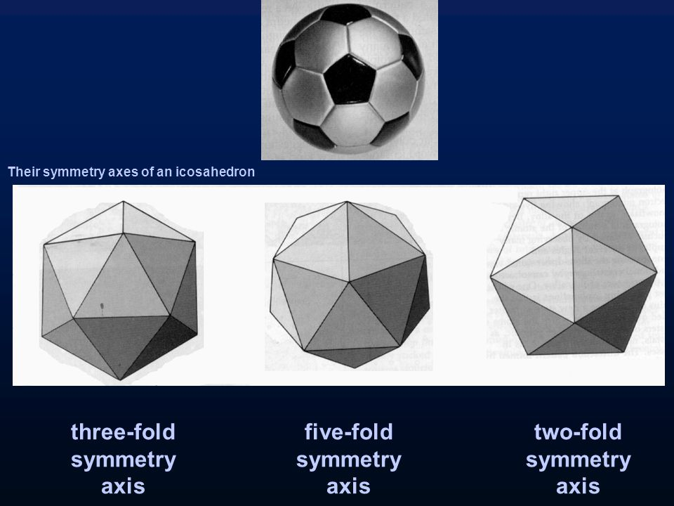 five-fold symmetry axis three-fold symmetry axis two-fold symmetry axis Their symmetry axes of an icosahedron