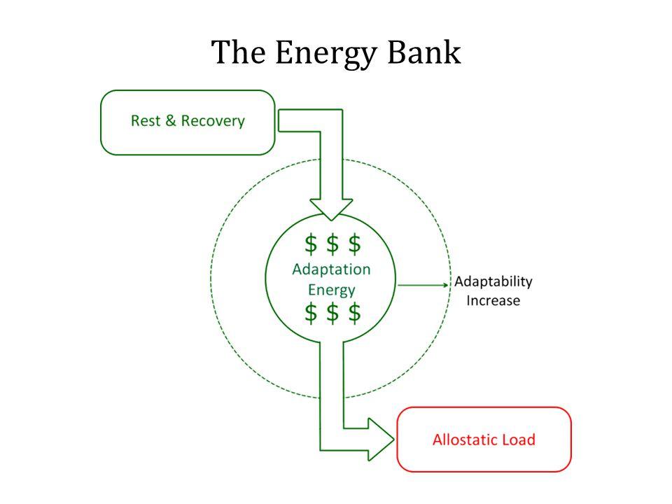 The Energy Bank