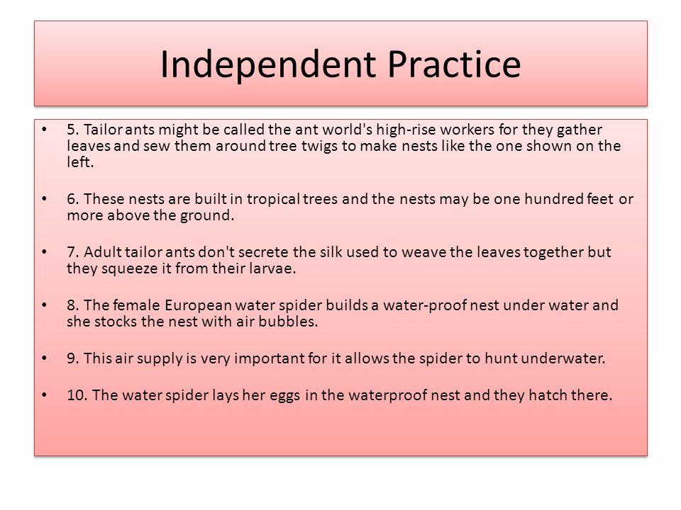 Independent Practice 5.