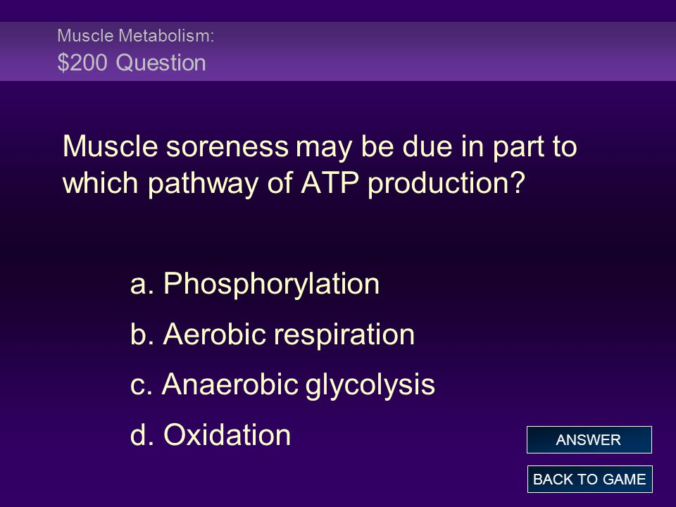 Muscle Metabolism: $200 Question Muscle soreness may be due in part to which pathway of ATP production.