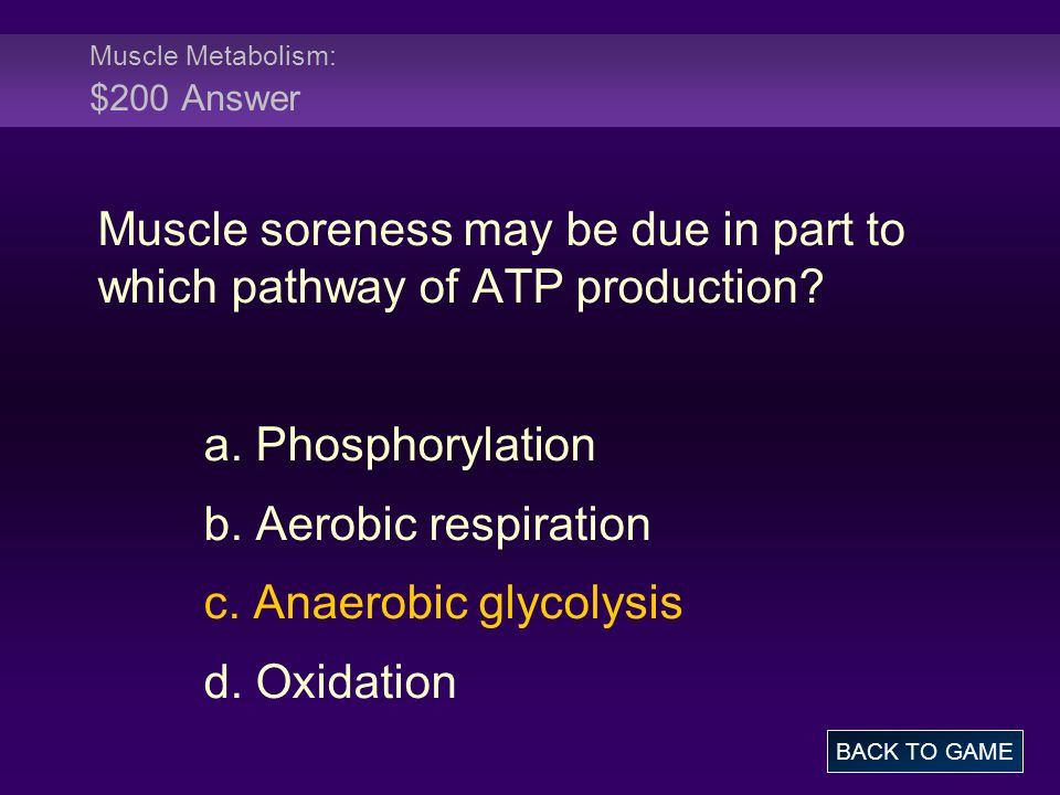 Muscle Metabolism: $200 Answer Muscle soreness may be due in part to which pathway of ATP production.