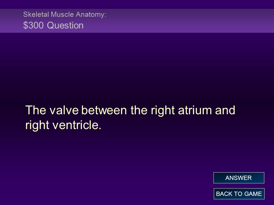 Skeletal Muscle Anatomy: $300 Question The valve between the right atrium and right ventricle.