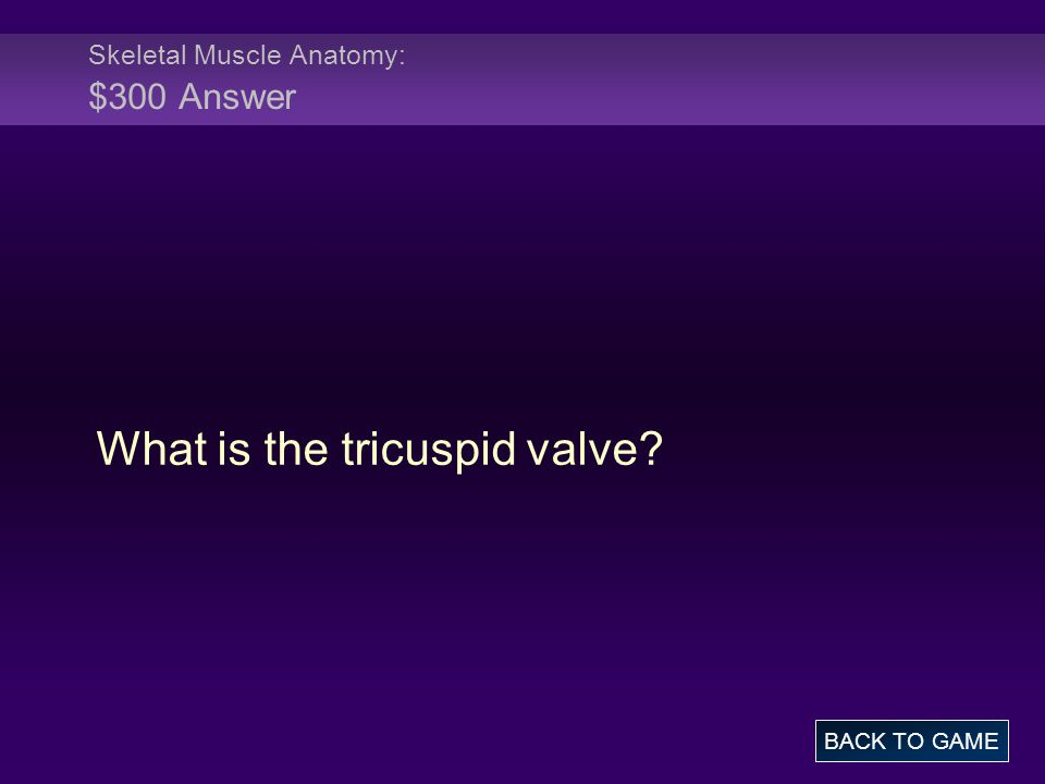 Skeletal Muscle Anatomy: $300 Answer What is the tricuspid valve? BACK TO GAME