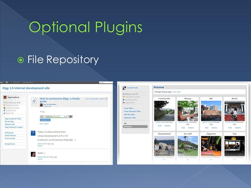  File Repository