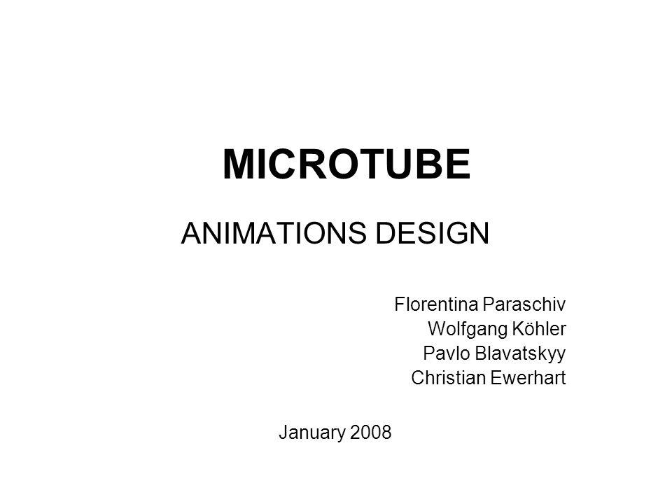 MICROTUBE ANIMATIONS DESIGN Florentina Paraschiv Wolfgang Köhler Pavlo Blavatskyy Christian Ewerhart January 2008