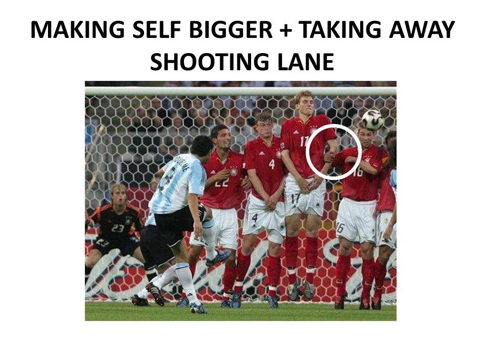 MAKING SELF BIGGER + TAKING AWAY SHOOTING LANE